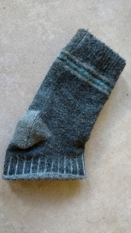 angus-sock